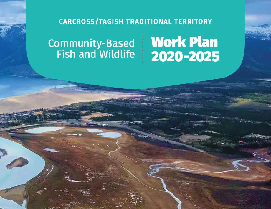 Fish and Wildlife Work Plan 2020-2025